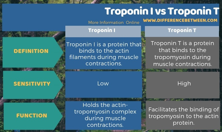 Difference Between Troponin I and Troponin T