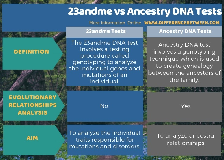 Difference Between 23andme and Ancestry DNA Tests in Tabular Form