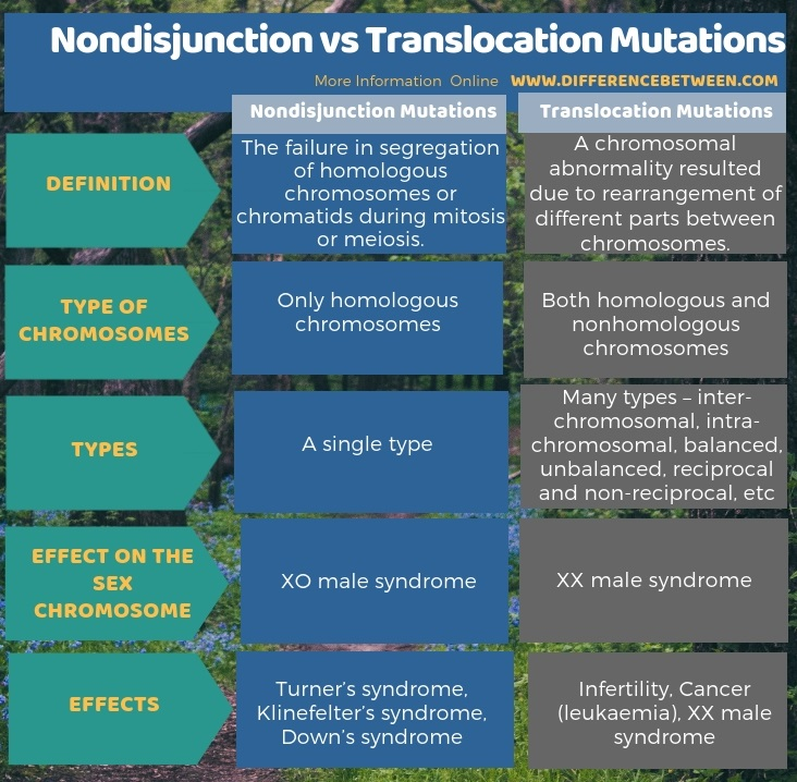 Difference Between Nondisjunction and Translocation Mutations in Tabular Form