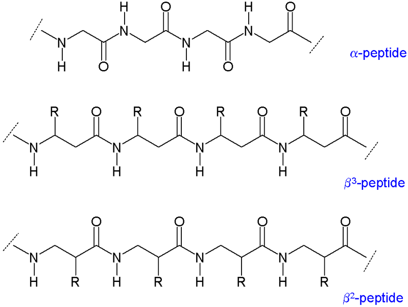 Key Difference Between SARMs and Peptides