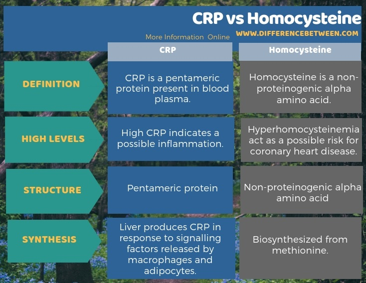 Difference Between CRP and Homocysteine in Tabular Form