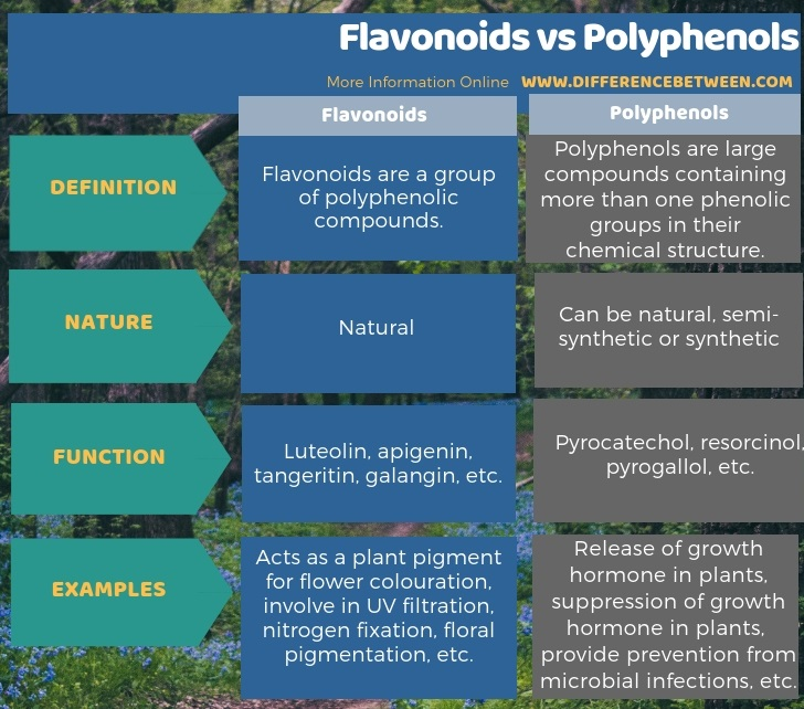 Difference Between Flavonoids and Polyphenols in Tabular Form