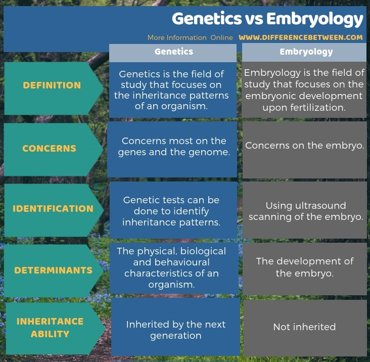 Difference Between Genetics and Embryology in Tabular Form