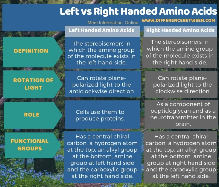 Difference Between Left and Right Handed Amino Acids in Tabular Form
