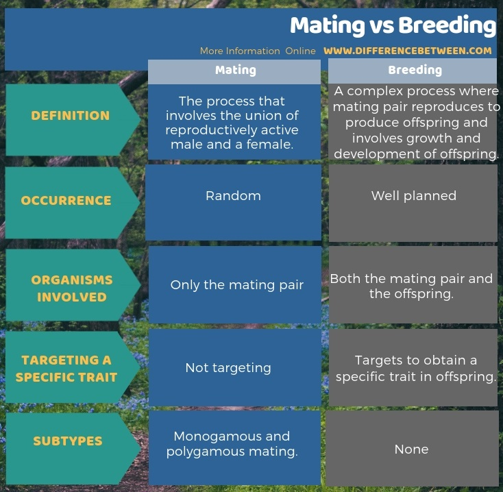 Difference Between Mating and Breeding in Tabular Form