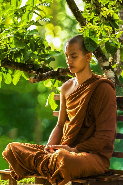 Difference Between Meditation and Sleep