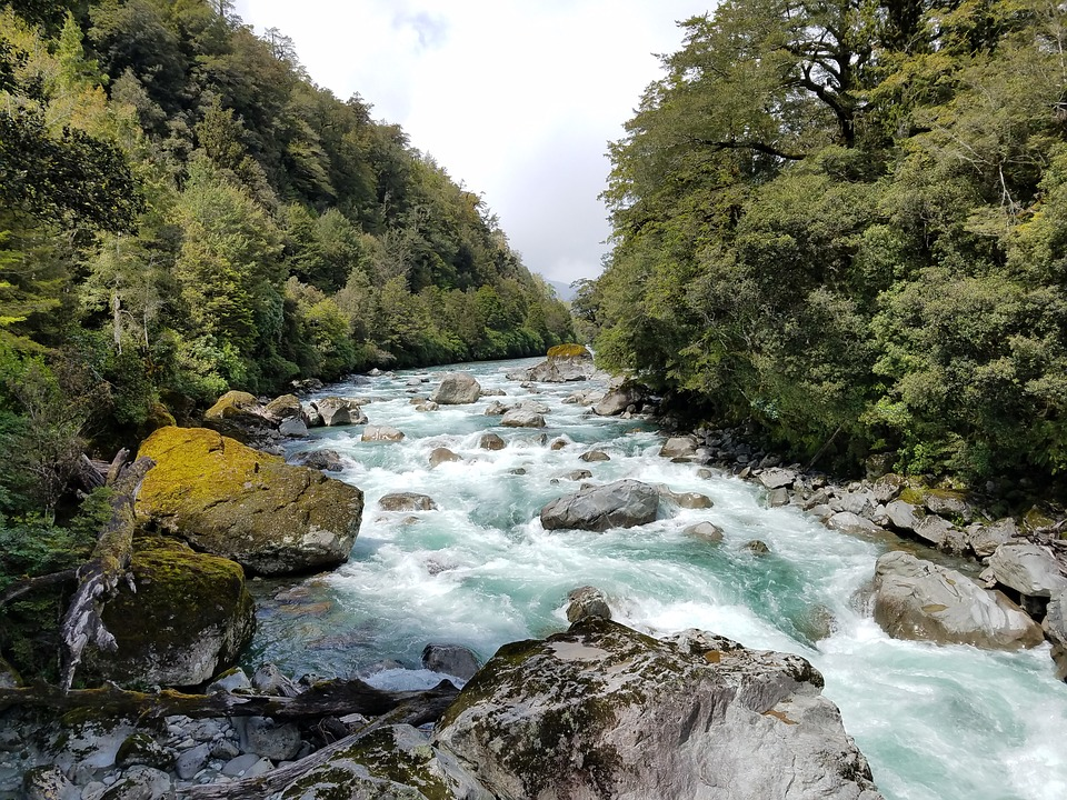 Difference Between a Stream and a Brook