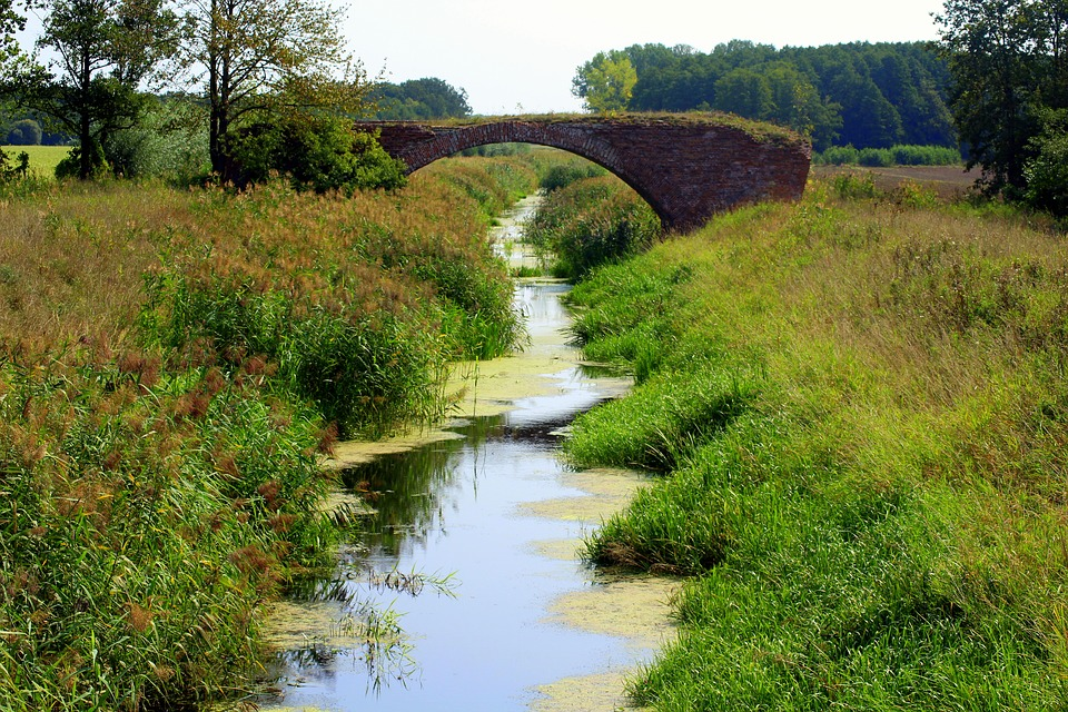 Key Difference Between a Stream and a Brook