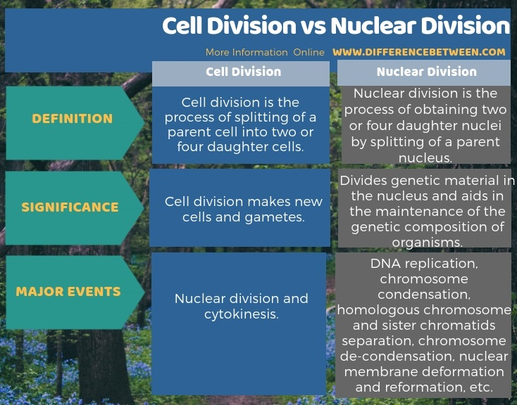 Difference Between Cell Division and Nuclear Division in Tabular Form