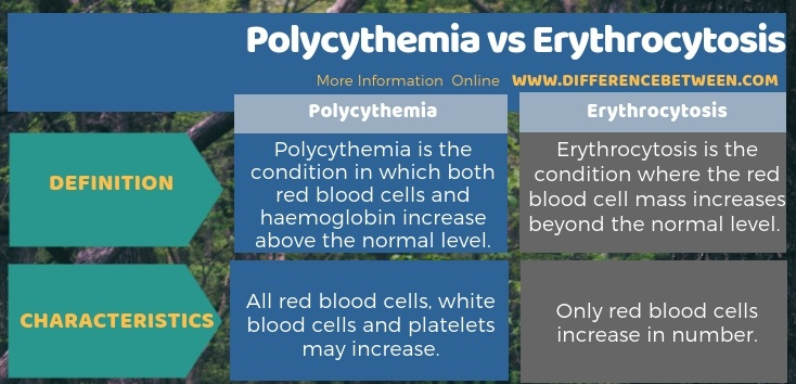 Difference Between Polycythemia and Erythrocytosis in Tabular Form