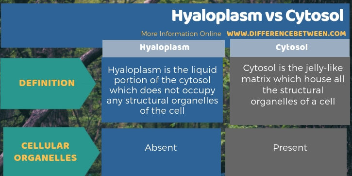 Difference Between Hyaloplasm and Cytosol in Tabular Form