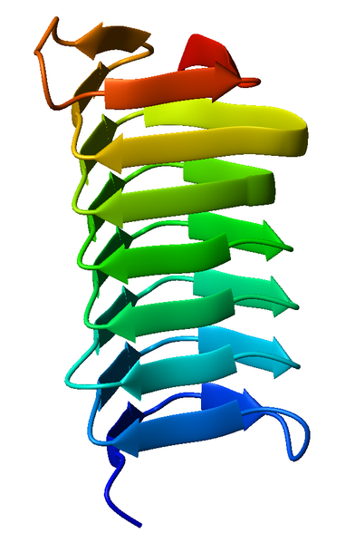 Difference Between Alpha and Beta Helix
