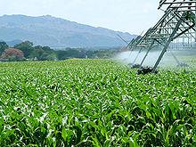 Key Difference - Ethanol vs Bioethanol