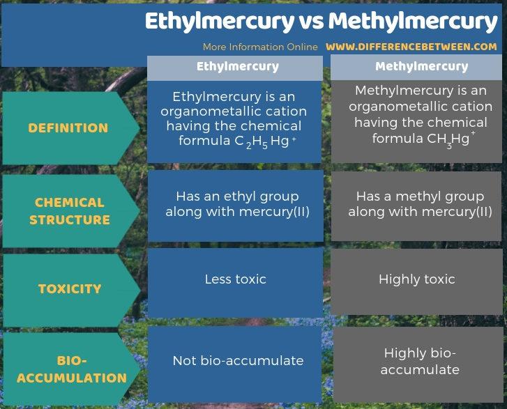 Difference Between Ethylmercury and Methylmercury in Tabular Form