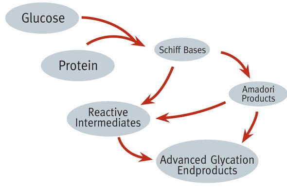 Key Difference - Glycation vs Glycosylation