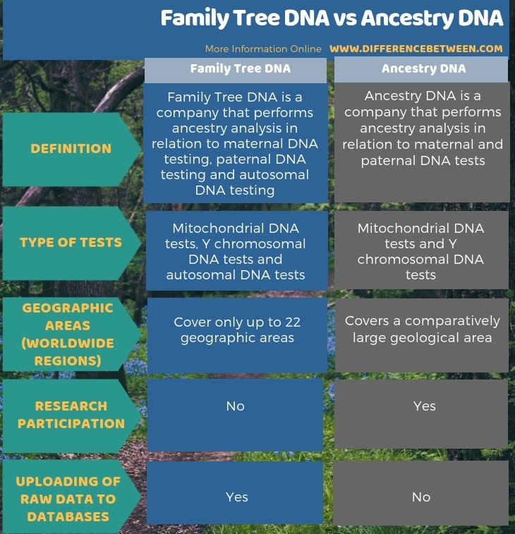 Difference Between Family Tree DNA and Ancestry DNA in Tabular Form