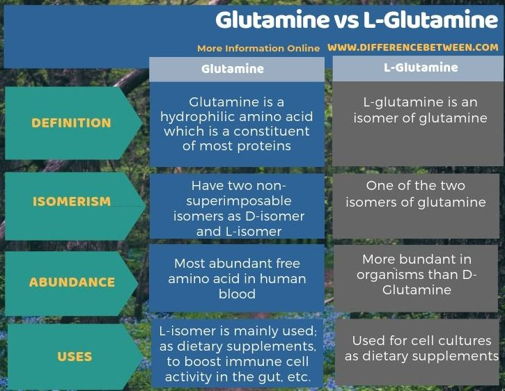 Difference Between Glutamine and L-Glutamine in Tabular Form