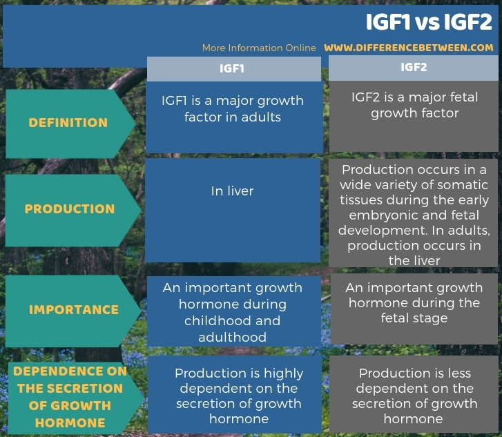 Difference Between IGF1 and IGF2 in Tabular Form