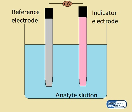 Difference Between Indicator Electrode and Reference Electrode
