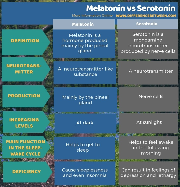 Difference Between Melatonin and Serotonin in Tabular Form