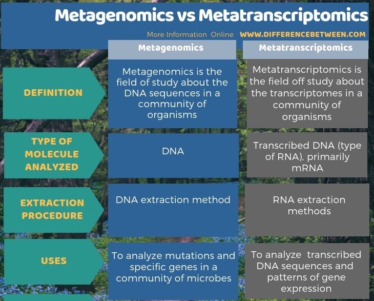 Difference Between Metagenomics and Metatranscriptomics in Tabular Form