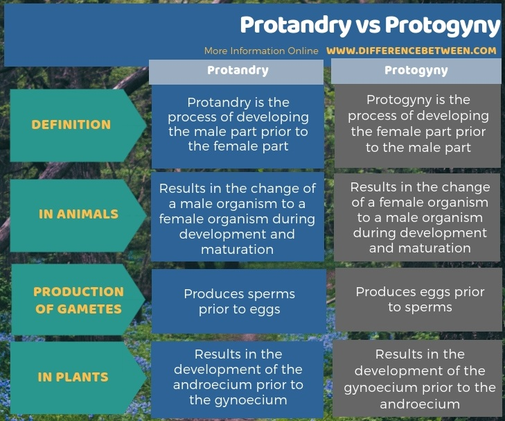 Difference Between Protandry and Protogyny in Tabular Form