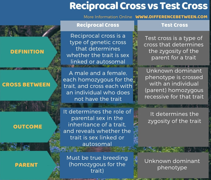 Difference Between Reciprocal Cross and Test Cross in Tabular Form