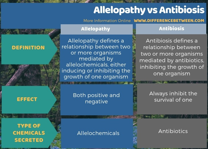 Difference Between Allelopathy and Antibiosis in Tabular Form