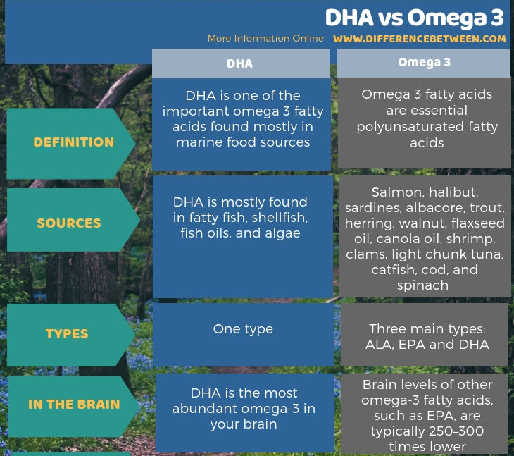 Difference Between Dha And Omega 3
