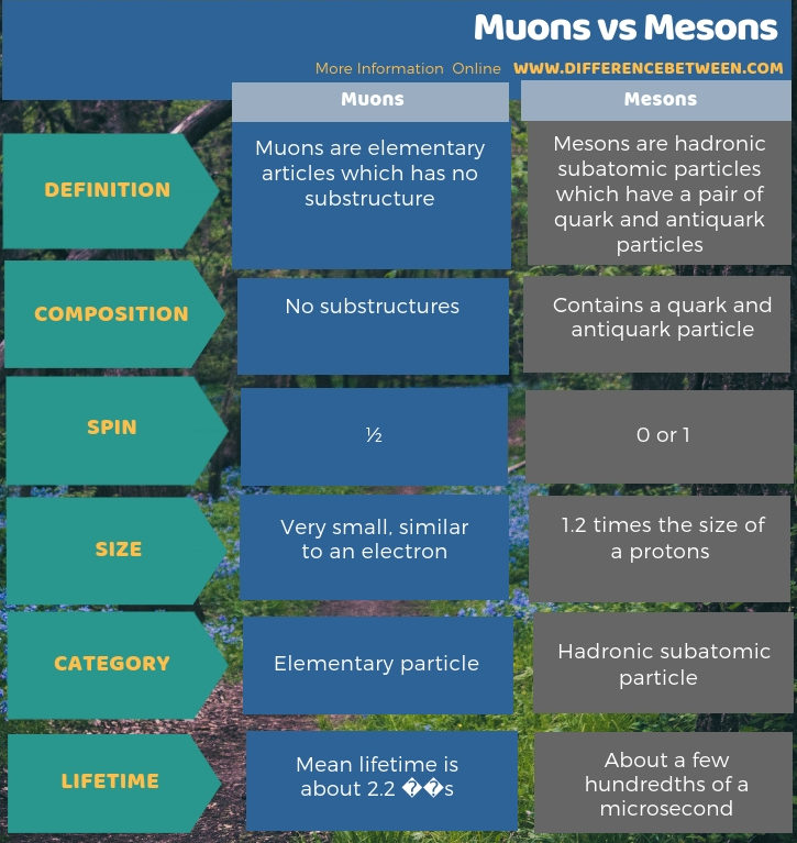 Difference Between Muons and Mesons in Tabular Form
