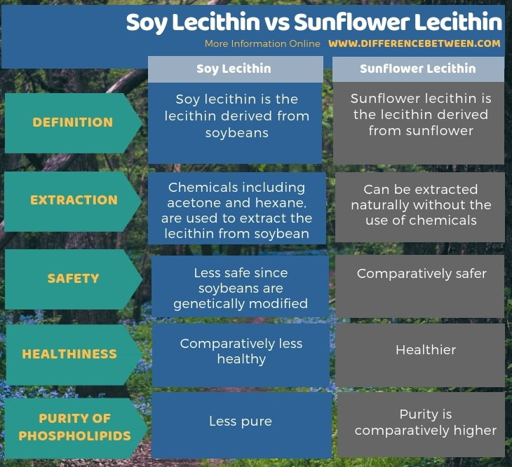 Difference Between Soy Lecithin and Sunflower Lecithin in Tabular Form