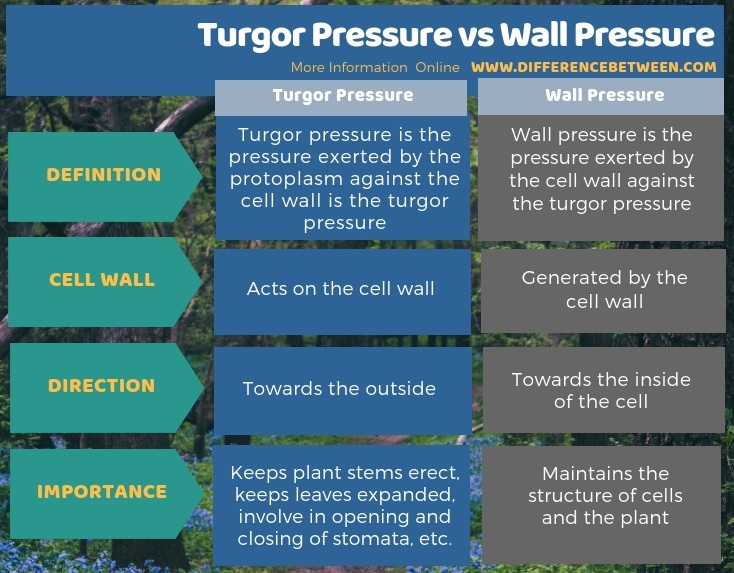 Difference Between Turgor Pressure and Wall Pressure in Tabular Form