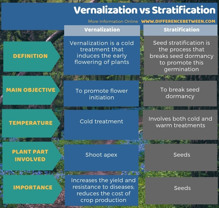Difference Between Vernalization and Stratification in Tabular Form