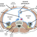 Difference Between Visceral and Parietal Serous Membranes