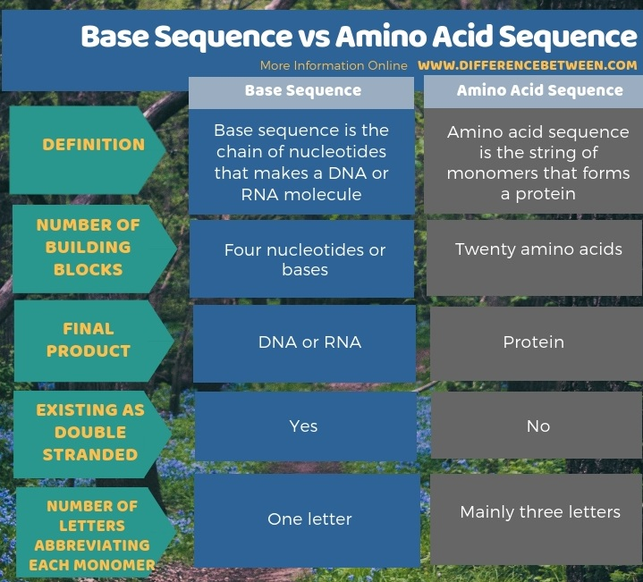 Difference Between Base Sequence and Amino Acid Sequence in Tabular Form