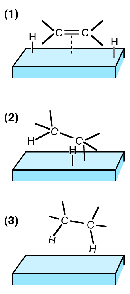 Difference Between Chemisorption and Physisorption