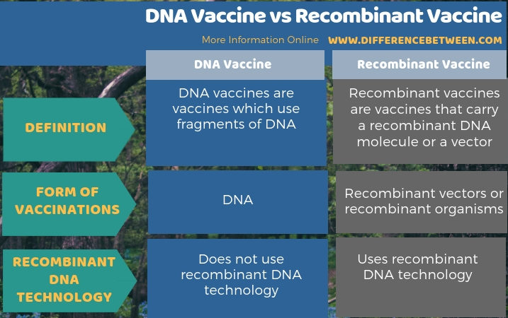 Difference Between DNA Vaccine and Recombinant Vaccine in Tabular Form