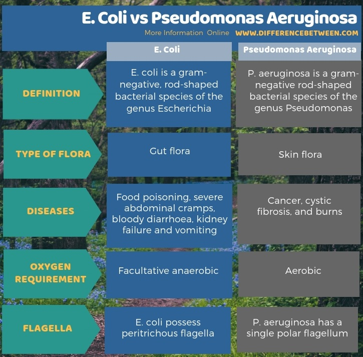 Difference Between E. Coli and Pseudomonas Aeruginosa in Tabular Form