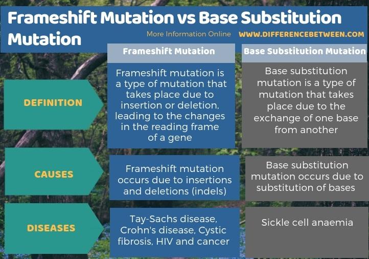 Difference Between Frameshift Mutation and Base Substitution Mutation in Tabular Form
