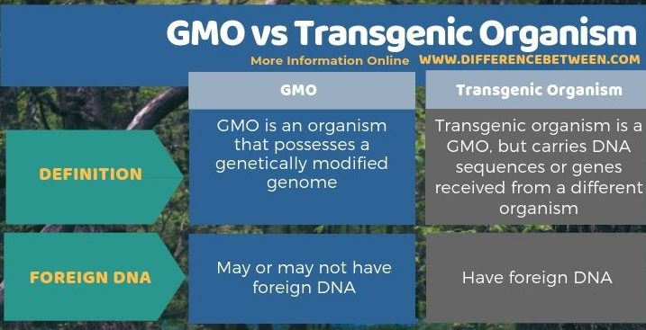 Difference Between GMO and Transgenic Organism in Tabular Form