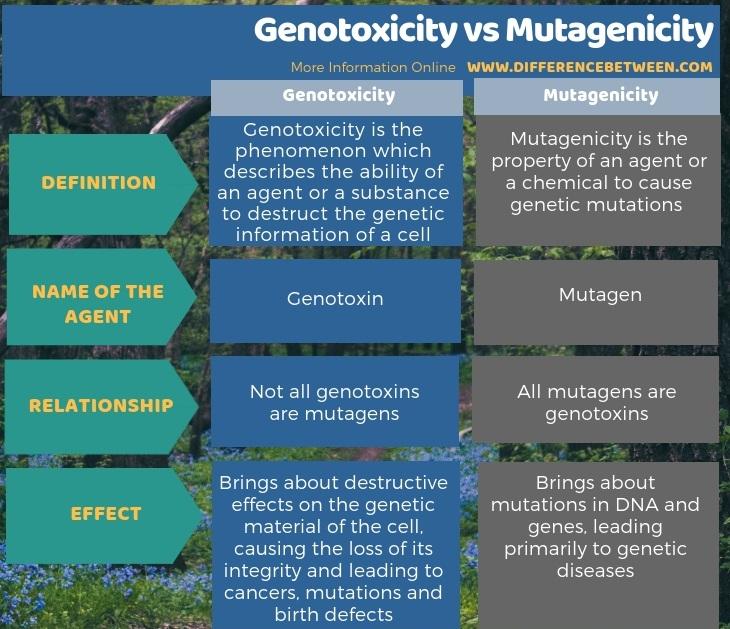 Difference Between Genotoxicity and Mutagenicity in Tabular Form