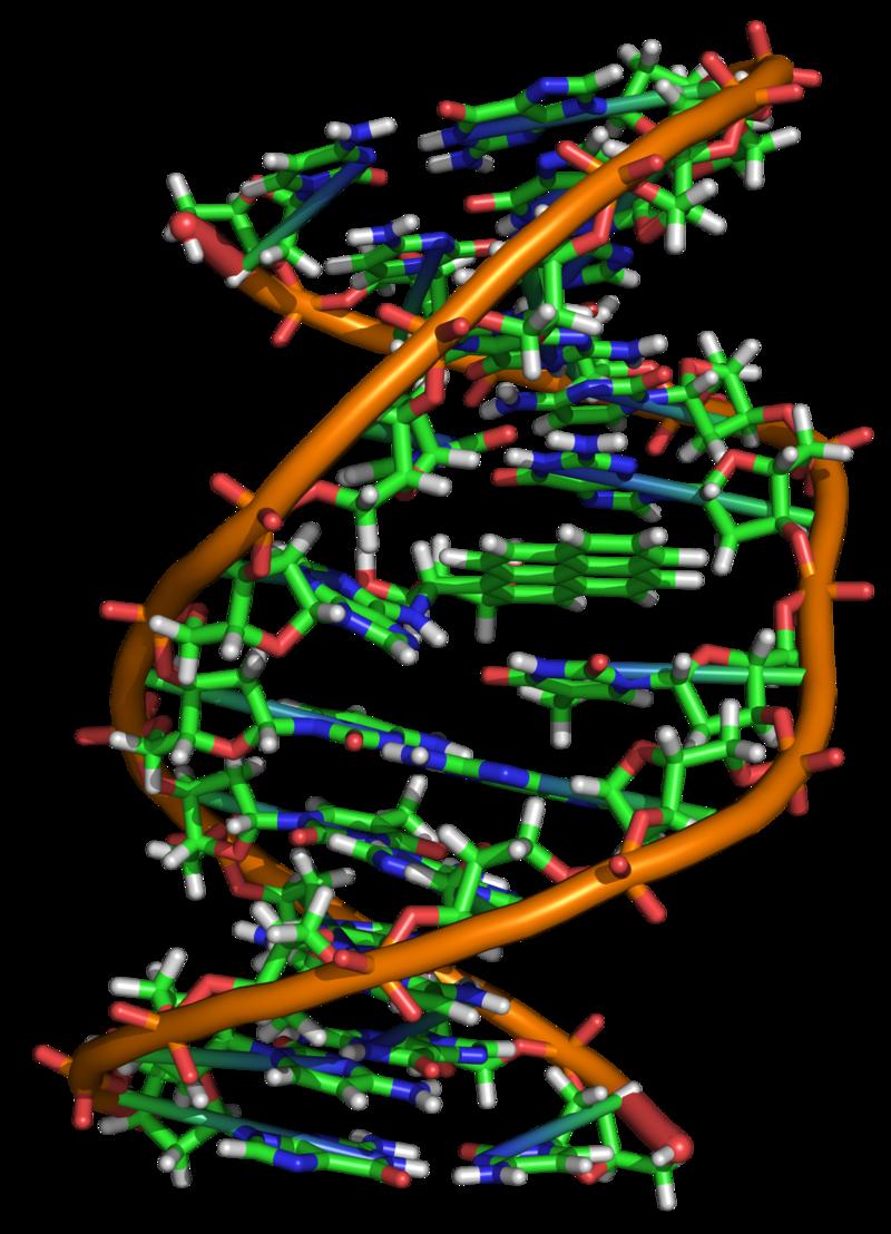 Key Difference - Genotoxicity vs Mutagenicity