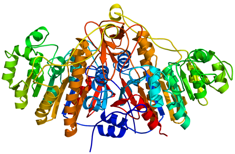 Key Difference - Phosphorus vs Alkaline Phosphatase