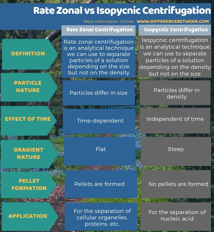 Difference Between Rate Zonal and Isopycnic Centrifugation in Tabular Form