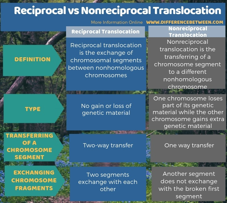 Difference Between Reciprocal and Nonreciprocal Translocation in Tabular Form