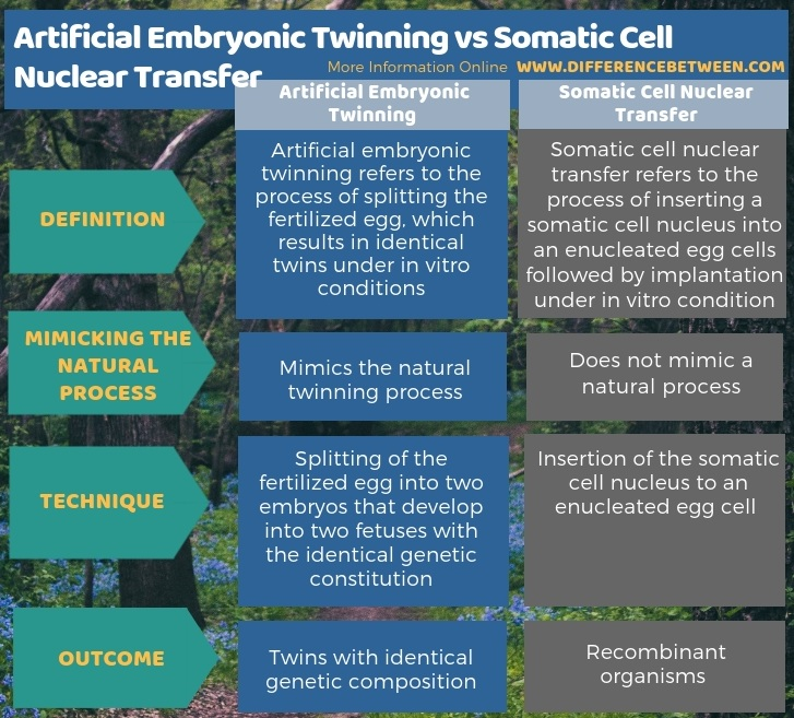 Difference Between Artificial Embryonic Twinning and Somatic Cell Nuclear Transfer - Tabular Form