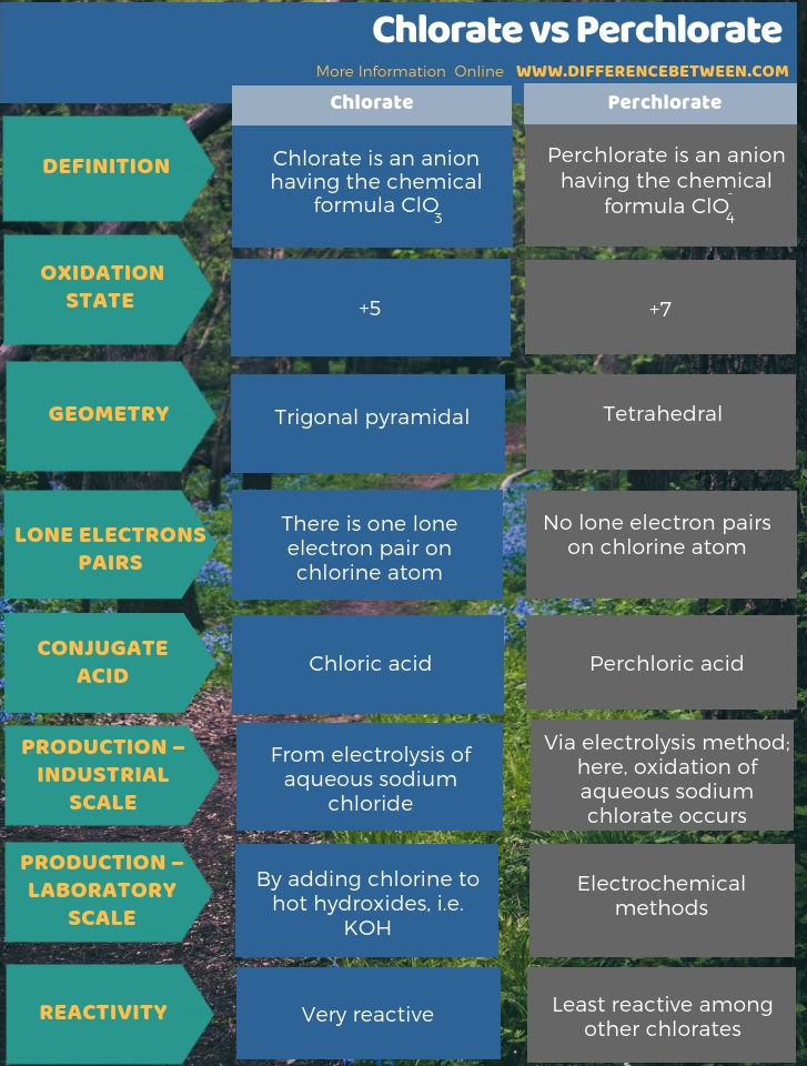 Difference Between Chlorate and Perchlorate - Tabular Form