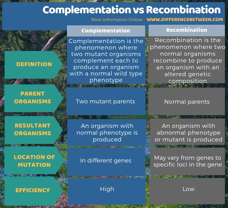 Difference Between Complementation and Recombination - Tabular Form