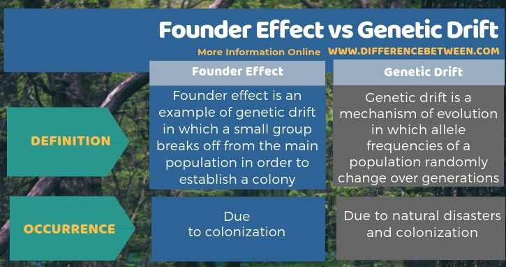 Difference Between Founder Effect and Genetic Drift in Tabular Form