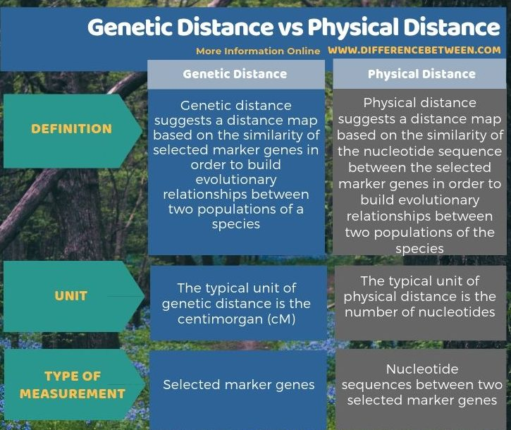 Difference Between Genetic Distance and Physical Distance - Tabular Form